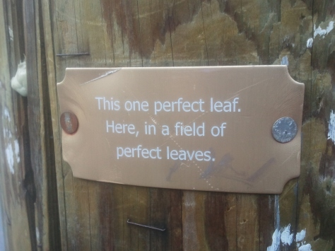 """This one perfect leaf. Here, in a field of  perfect leaves."""